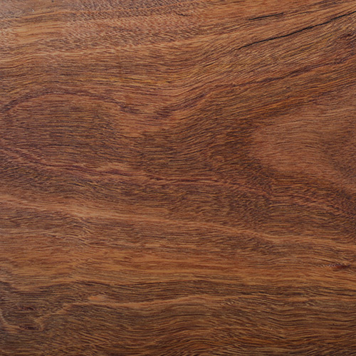 Spotted Gum Clear oiled