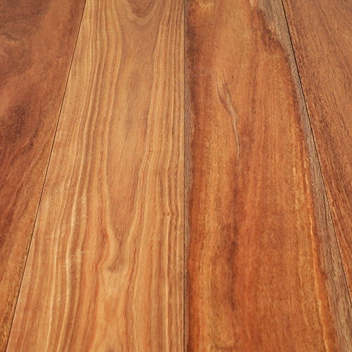 Spotted Gum Enviroclear