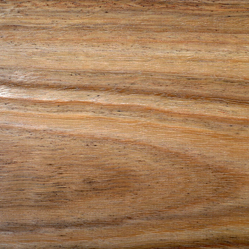 Spotted Gum Fireshield Timber clear
