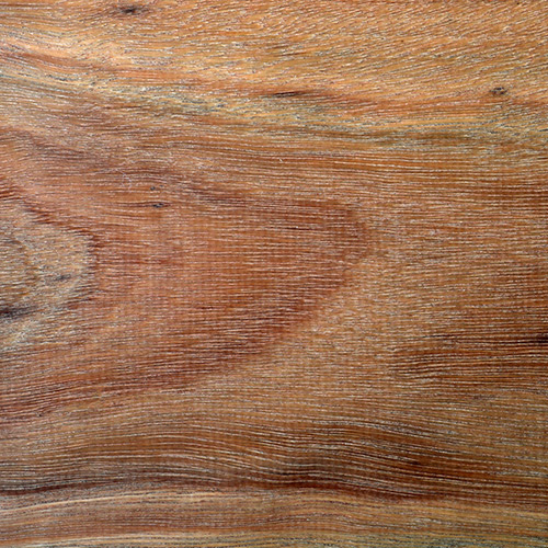 Spotted Gum Unfinished